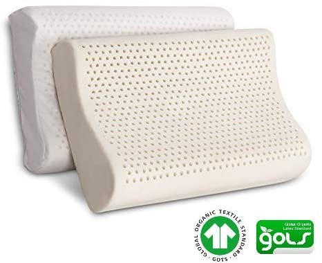 Best organic pillows